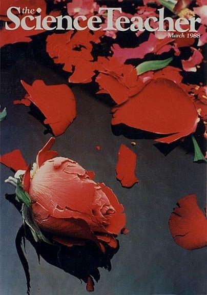 Sci_Teacher_roses_cover_sm