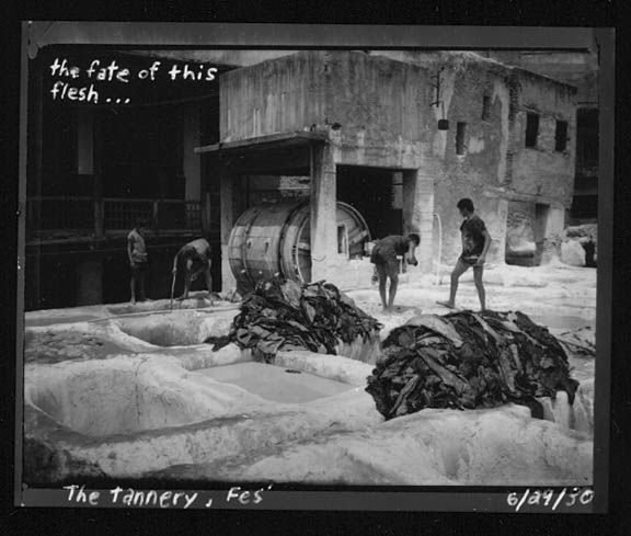 Tannery-Fez_sm