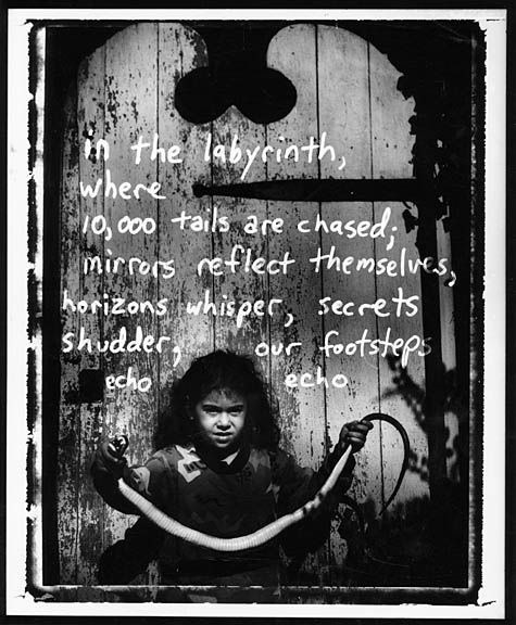 In_the_Labyrinth_001_sm
