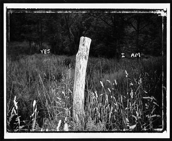 Yes_I_am__001_sm