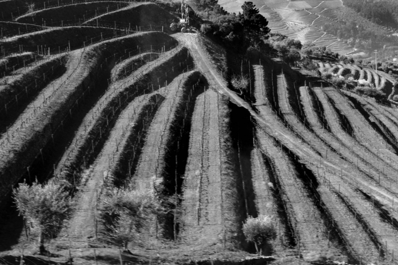 Duoro Valley Portugal including Quinta Jillita, Quinta Santa Eufemia, town of Pinhao