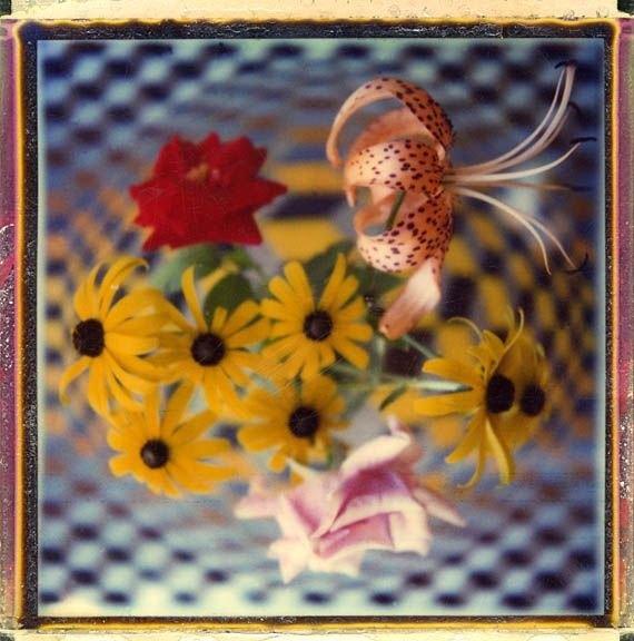 SX70_FLOWERS_1970S_sm