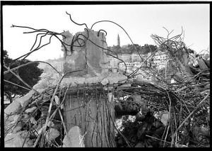 c50-Destroyed house 7 sm.jpg