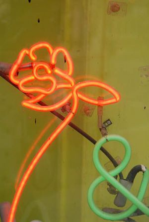 DC Street neon rose at 001 sm.jpg
